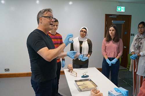 Guy Sutton teaching a brain dissection